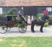 Horse and Carriage Hire in Amble